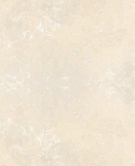 Silestone DARIA (N)