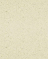 Vicostone BQ240 Beige Pearl *